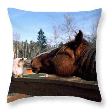 Best Friends Throw Pillow by Thomas R Fletcher