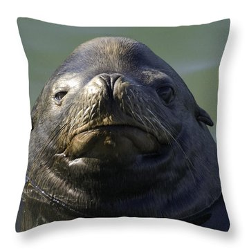 Throw Pillow featuring the photograph Big Face by Betty Depee