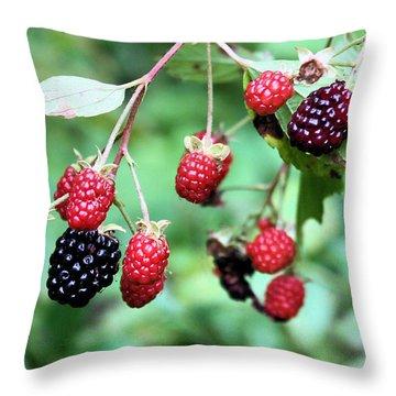 Blackberries Throw Pillow by Kristin Elmquist
