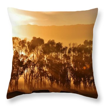 Throw Pillow featuring the photograph Blue Gum Trees by Werner Lehmann