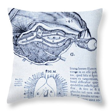 Brain And Pineal Gland Throw Pillow