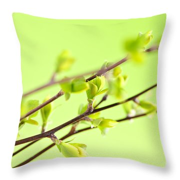 Branches With Green Spring Leaves Throw Pillow by Elena Elisseeva