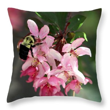 Throw Pillow featuring the photograph Buzzing Beauty by Elizabeth Winter