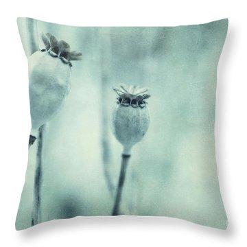 Capsule Series Throw Pillow by Priska Wettstein