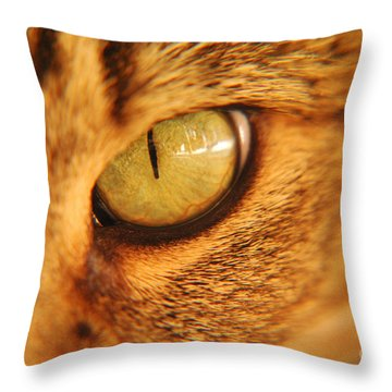 Cats Eye Throw Pillow by Micah May