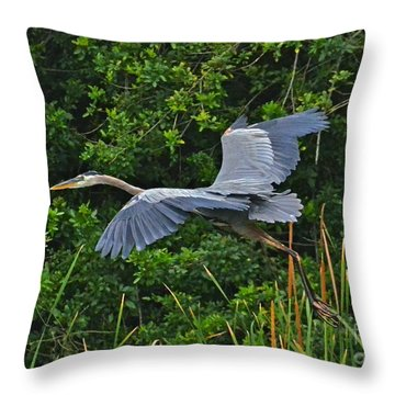 Changing Location Throw Pillow by Carol  Bradley