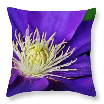 Clematis Close Up Throw Pillow by Bruce Bley