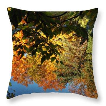 Colorful Reflections Throw Pillow by LeeAnn McLaneGoetz McLaneGoetzStudioLLCcom