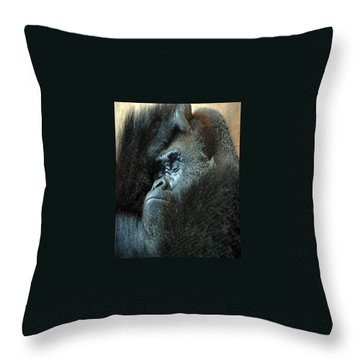 Confidence Throw Pillow by Skip Willits