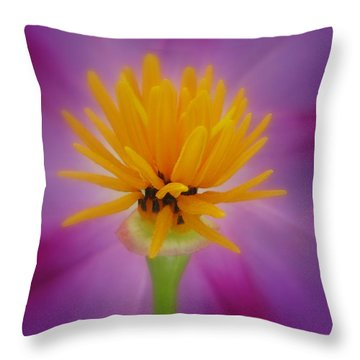 Confident Throw Pillow by Tina Marie