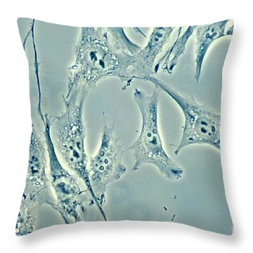 Connective Tissue Cells Throw Pillow