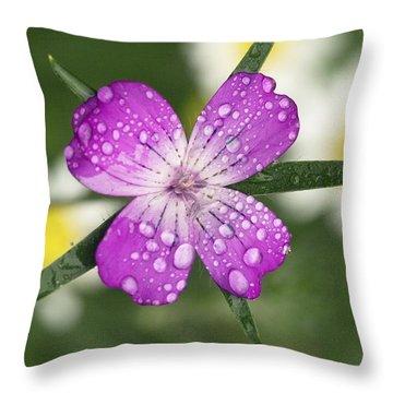 Agrostemma Githago Throw Pillows
