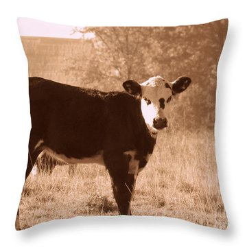 Cow Throw Pillow by France Laliberte