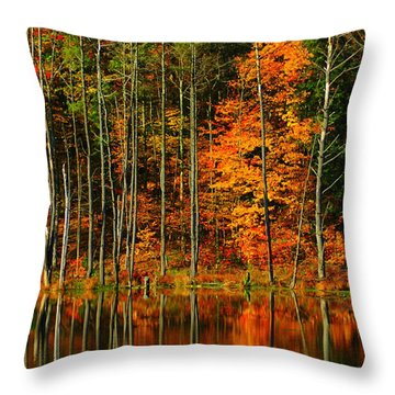 Coxsackie New York State Throw Pillow by Mark Gilman