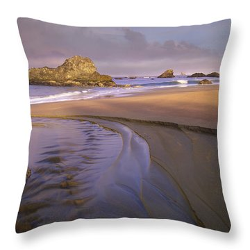 Creek Flowing Into Ocean At Harris Throw Pillow by Tim Fitzharris