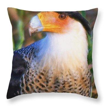Crested Caracara Throw Pillow