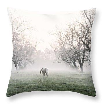 Daybreak Throw Pillow by Scott Pellegrin