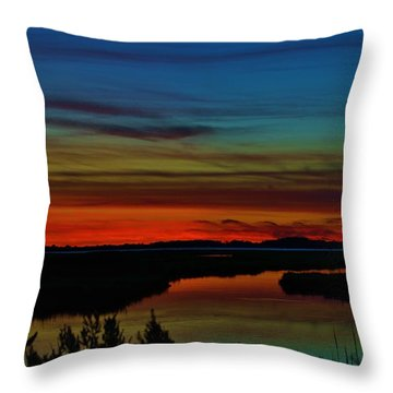 Deep Marshland Sunset Throw Pillow