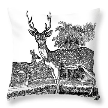 Deer Throw Pillow by Granger