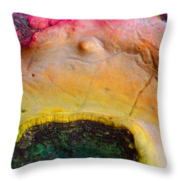 Destiny Throw Pillow by Richard Laeton