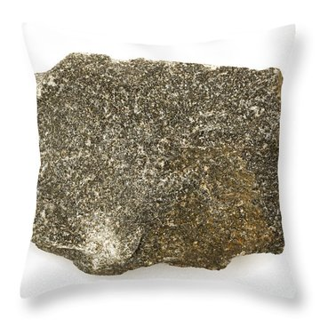 Diabase Throw Pillow by Ted Kinsman