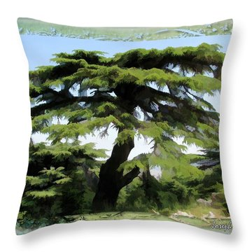 Do-00512 Cedar Forest Throw Pillow