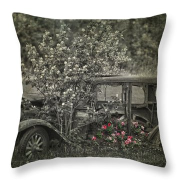 Driven To Find Love  Throw Pillow by Jerry Cordeiro