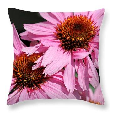Echinacea Purpurea Or Purple Coneflower Throw Pillow by J McCombie