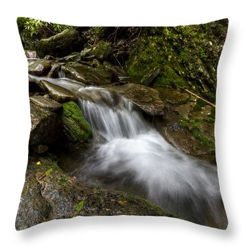 Enchanted Forest Throw Pillow by Debra and Dave Vanderlaan