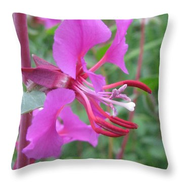 Throw Pillow featuring the photograph Encompass by Tina Marie