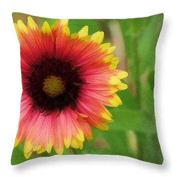 Throw Pillow featuring the photograph Enough Of The Flowers by John Crothers