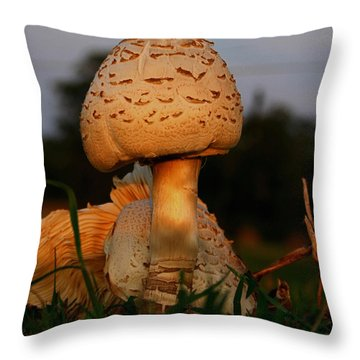 Evening Mushroom Throw Pillow