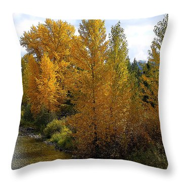 Fall Colors Throw Pillow by Steve McKinzie