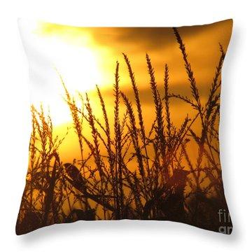 Farming Sunset Throw Pillow by France Laliberte