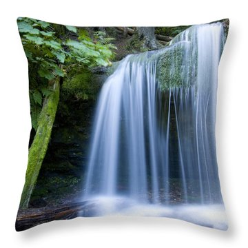 Fern Falls Throw Pillow by Idaho Scenic Images Linda Lantzy