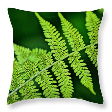 Throw Pillow featuring the photograph Fern Seed by Sharon Elliott