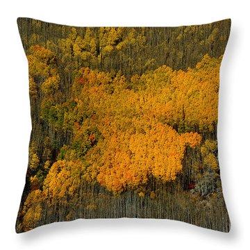 Fine Art Of Nature Throw Pillow by Vicki Pelham