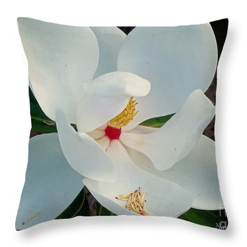 Throw Pillow featuring the photograph White Florida Magnolia by Nava Thompson
