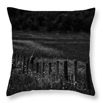 Foraging Break  Throw Pillow by Empty Wall