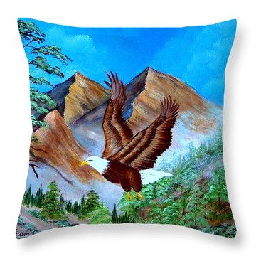 Freedom Flight Throw Pillow