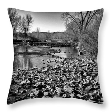 From Under The Bridge Throw Pillow by David Patterson