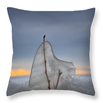 Frozen In Time Throw Pillow by Heather  Rivet