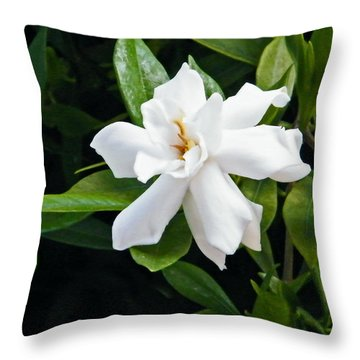 Throw Pillow featuring the photograph Gardenia by Brian Wright