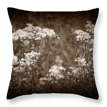 Going To Seed Throw Pillow by Judi Bagwell