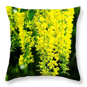 Golden Chain Tree Throw Pillow