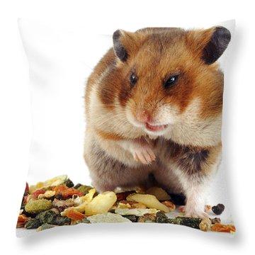 Golden Hamster Throw Pillow by Jane Burton
