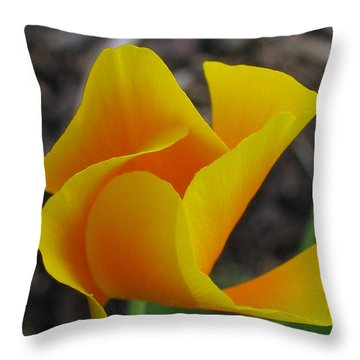 Throw Pillow featuring the photograph Grand Opening by Tina Marie