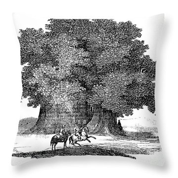 Great Chestnut Tree Throw Pillow by Granger