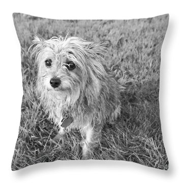 Gremlin Throw Pillow by Jeannette Hunt