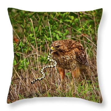 Hawk And Snake Throw Pillow